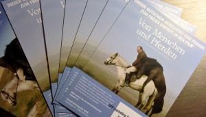 Islandfilm von Pferden und Menschen