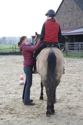 Harmonisches Zusammenspiel von Reiter/in und Pferd