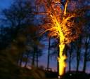Lichtshow durch FeFei